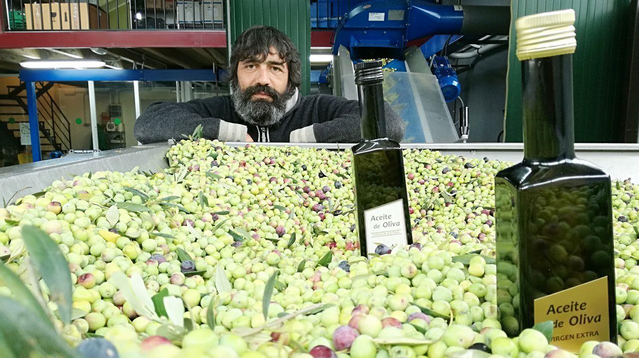 Galicia se pasa al verde oliva.