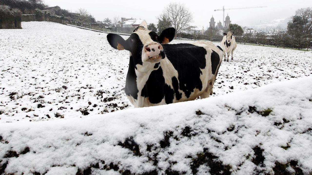 La nieve cubre de blanco A Mariña.