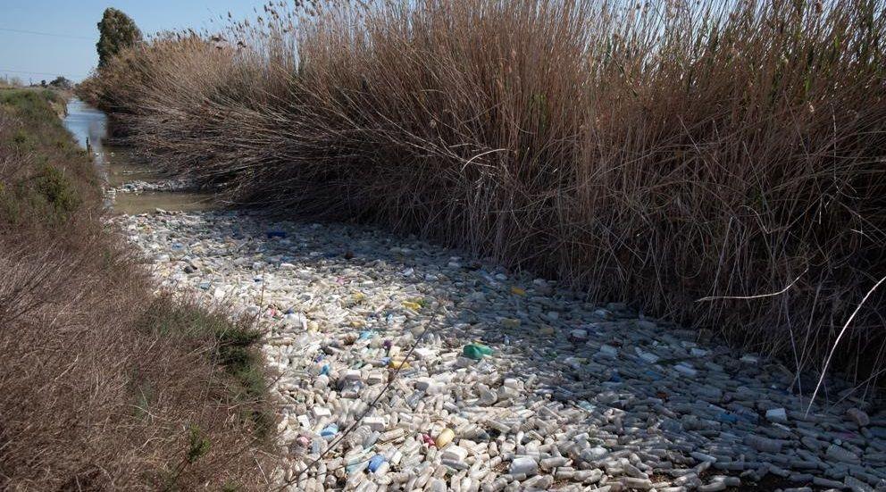 Se acabó la hibernación.Miles de kilos de basura se concentran en el desembocadura del río Segura