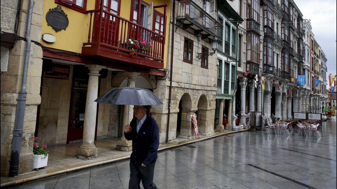 Las pinturas de Tito Bustillo.Museo Arqueológico de Asturias