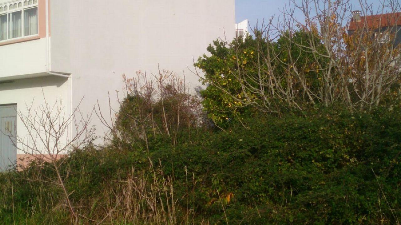 El viento que trae un temporal a Ferrol.Accesos a las playas de A Coruña cerrados por temporal ayer