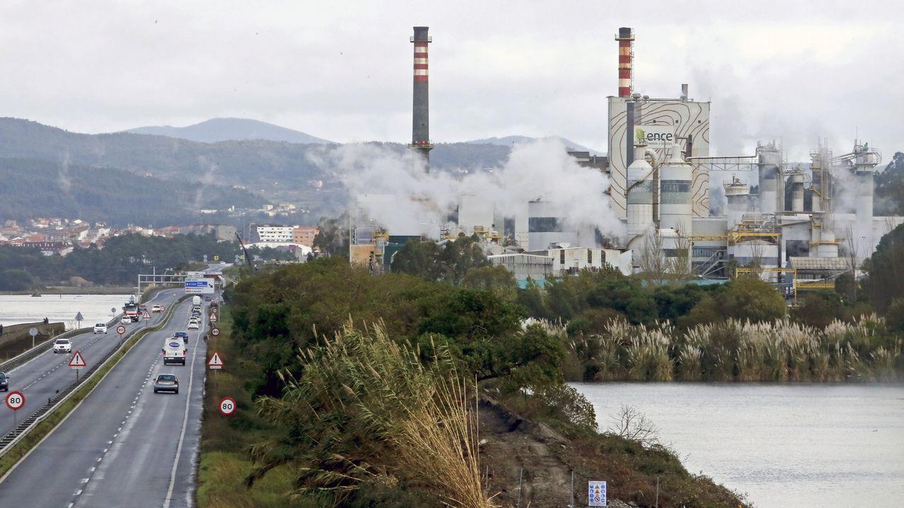 Estos son los altos cargos gallegos que han declarado su patrimonio.El consejero de Empleo, Turismo e Industria, Isaac Pola