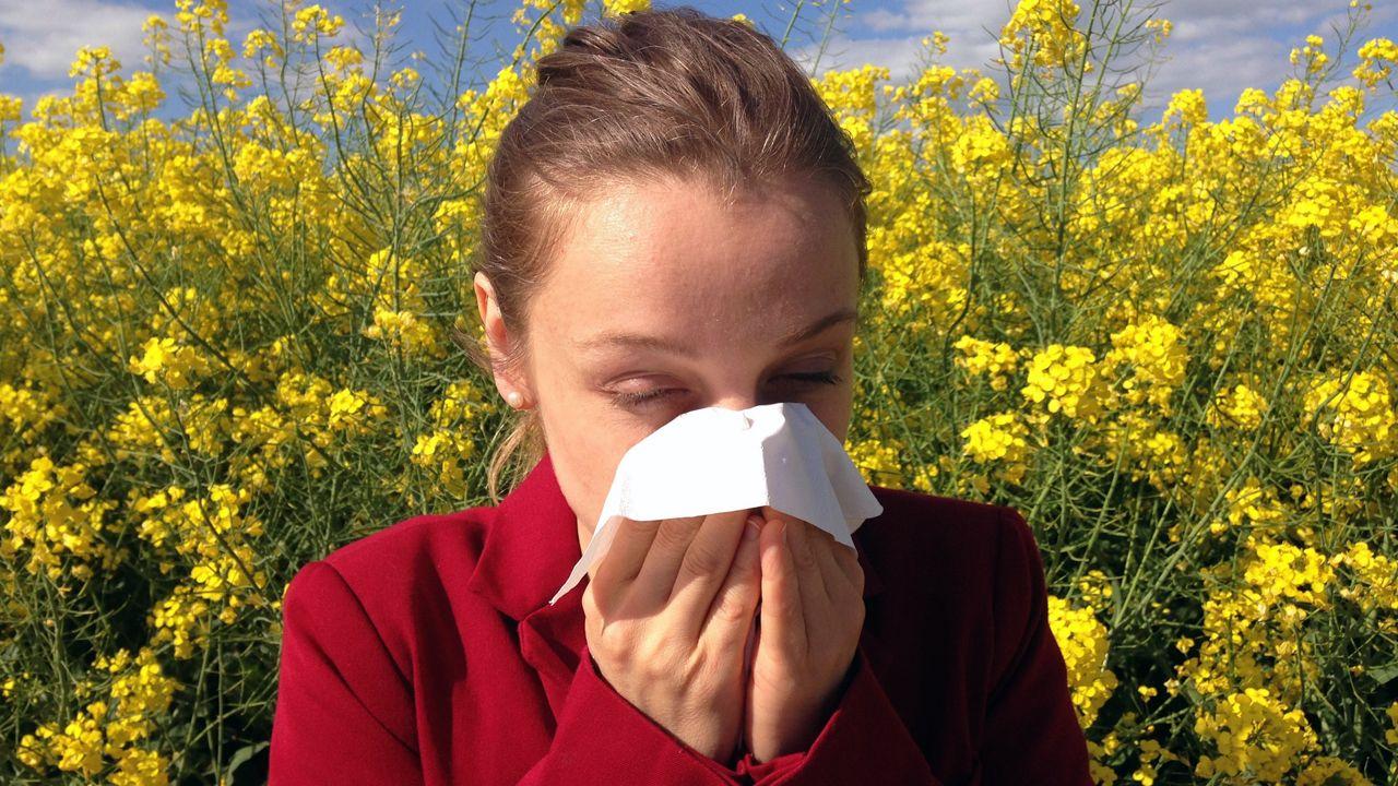 alergia, polen,.Una alérgica entre un mar de polen