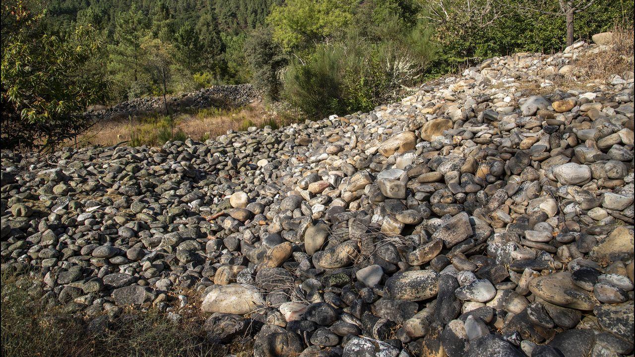 Muradellas o muras en Rairos. Estas acumulaciones de cantos rodados proceden son los rastros de una explotación aurífera