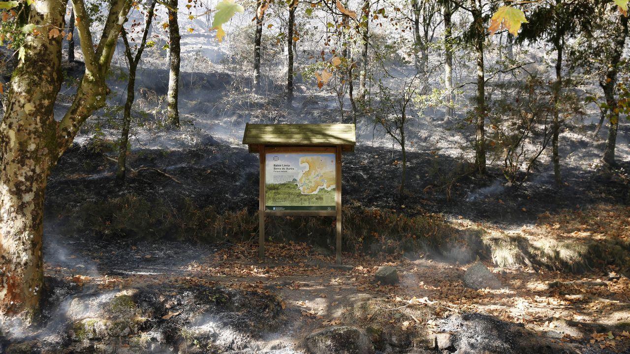 Rebrota el incendio que quemó más de 150 hectáreas en O Courel.En Ourense los escolares participaron en una actividad de concienciación contra la violencia machista