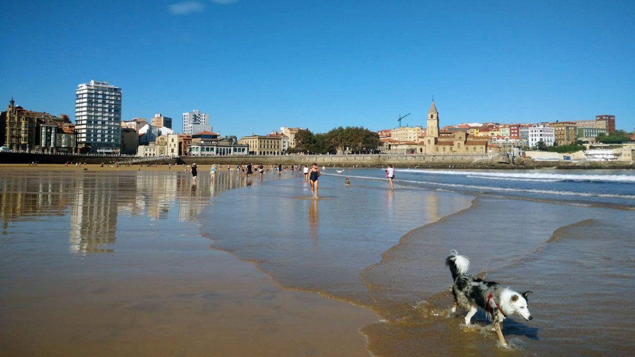 Un grupo de pescadores recoge el «campanu» del Sella, el segundo del día, capturado por Juan Antonio González, el «sastrín», en el Barcu de Arriondas..El buen tiempo ha llevado a muchos gijoneses a acercarse a la playa de San Lorenzo.
