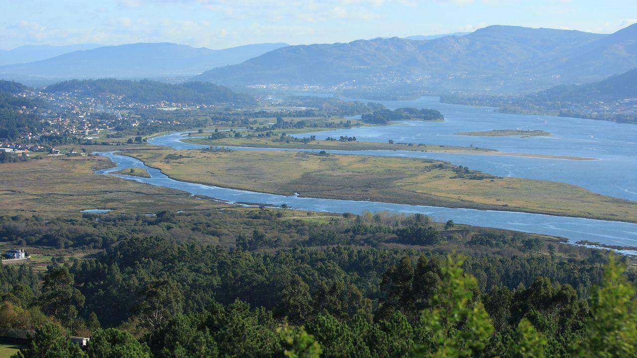 Estuario del río Miño