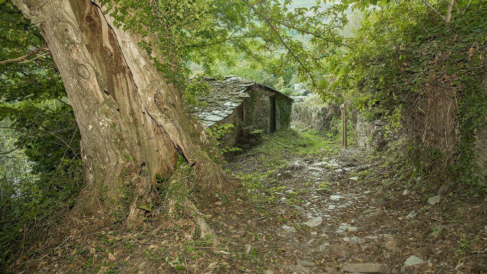 Un tramo del camino que pasa por la aldea