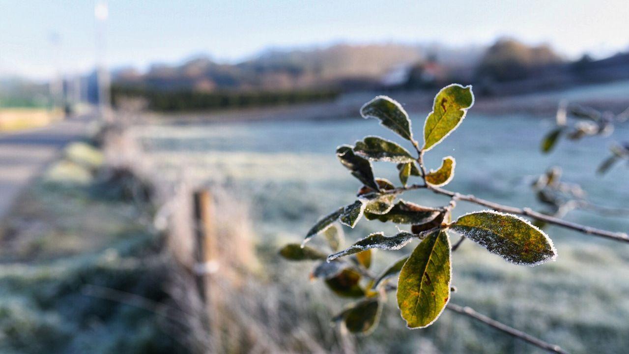 Frío en Galicia