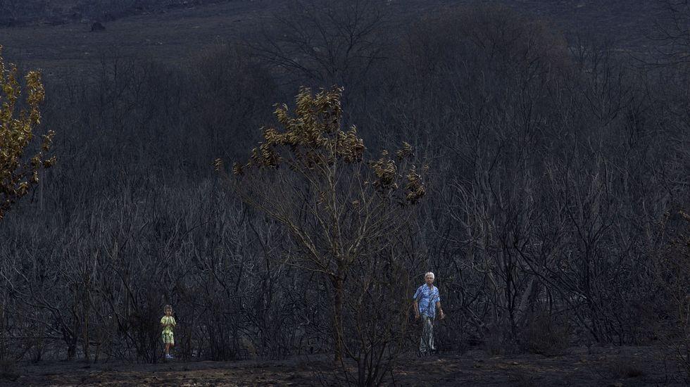 Hace dos semanas, vecinos y ecologistas realizaron una jornada de recuperación en la Serra do Larouco