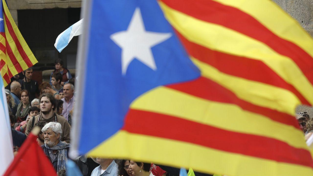 «Brigadas de limpieza» retiran lazos amarillos en varias localidades catalanas.Josep Fontana en Pontevedra, en una imagen de archivo