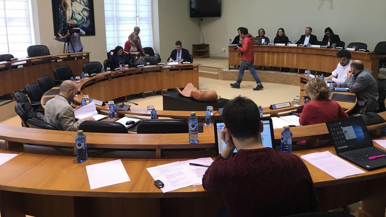 En el 2015, Carmela Silva sí compareció en la Comisión de Presupuestos del Parlamento