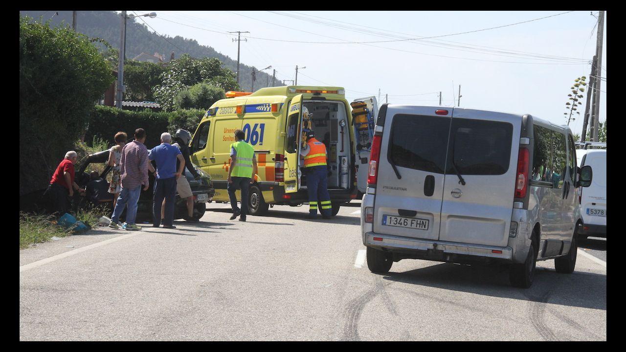 La Guardia Civil rescata a un jabalí atrapado con lazo en Soutomaior