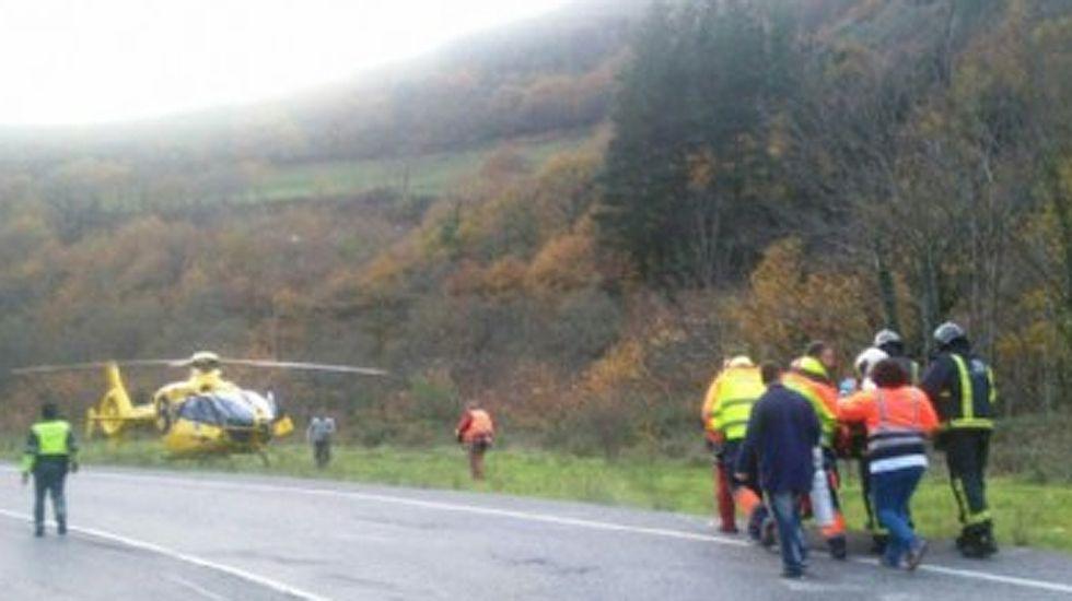El oso hallado en Moal.Traslado del herido al helicóptero del SEPA