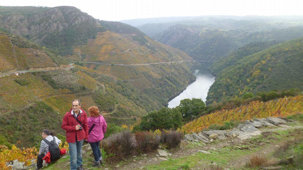 Participantes en un recorrido organizado por la Ruta do Viño da Ribeira Sacra con motivo del día mundial del enoturismo visitan la ribera de Amandi, en el municipio de Sober, en una imagen de archivo