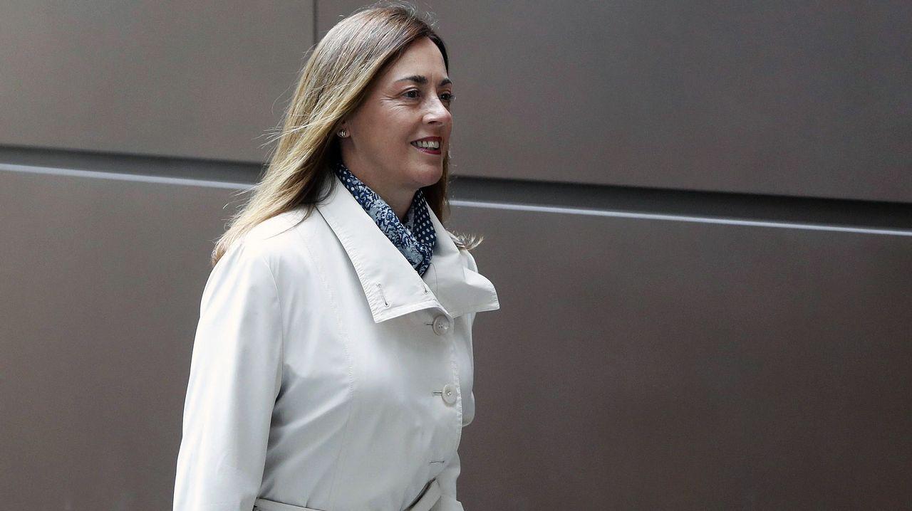 La exconsejera de Cultura del Principado, Ana Rosa Migoya, a su llegada a la Audiencia Provincial de Oviedo para declarar como testigo en el juicio por las presuntas irregularidades contables en el Centro Niemeyer