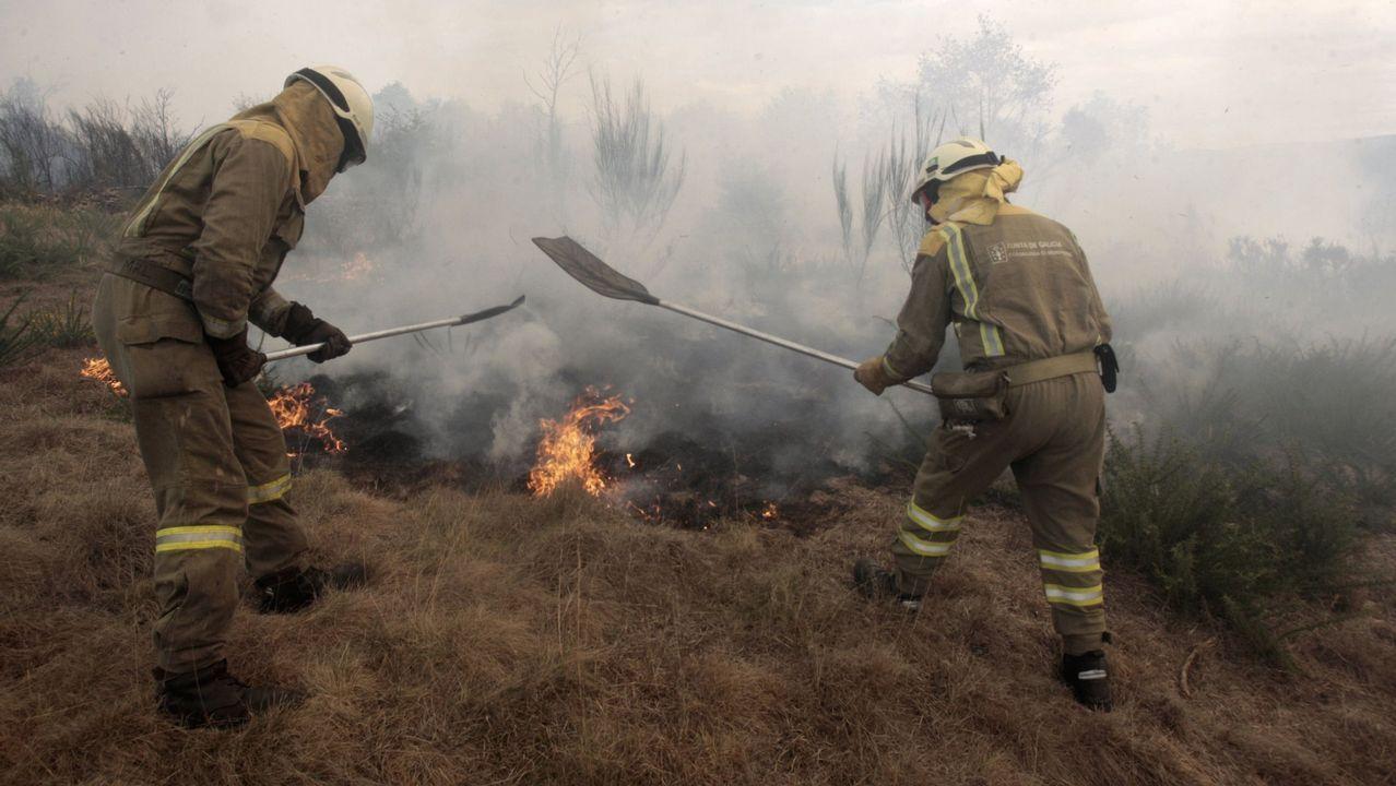 Brigadistas trabajando en la extinción de un incendio forestal en una foto de archivo