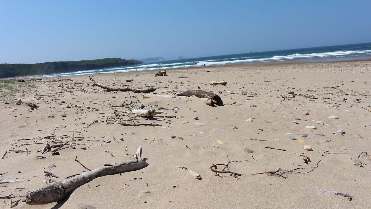 Cubo marrón dedicado a los residuos orgánicos.Playa de Xagó