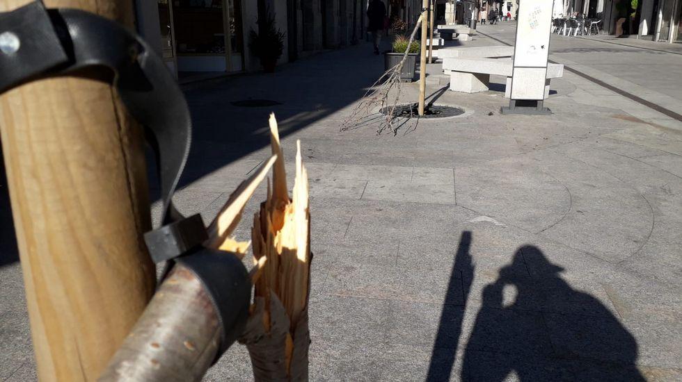 El Corredor Lugo - Monforte a 80Km/h.La factoría de Euroserum emplea a 45 personas en el polígono industrial de Monforte