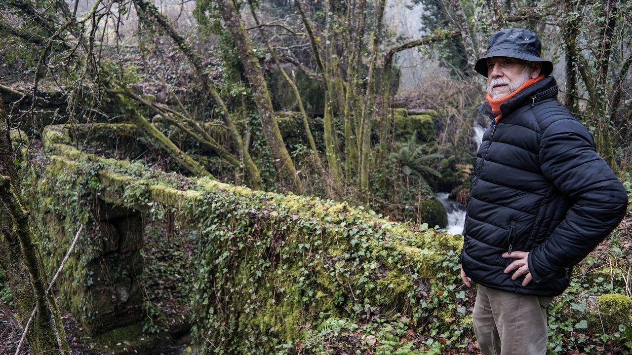 Pablo Rodríguez, Oitavén, fala sobre o bosque de Ridimoas