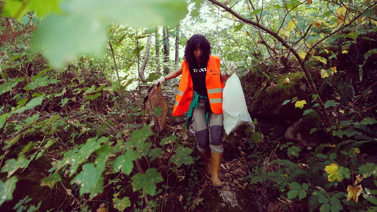 .Una voluntaria participa en uno d elos programas de COGERSA para limpiar un monte en Asturias