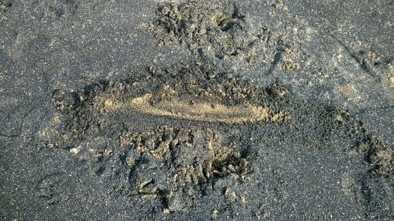 Detalle de la mancha de carbón en la arena de San Lorenzo
