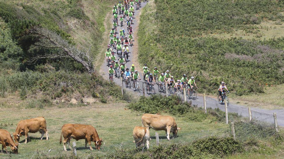 El pelotón del Día da Bicicleta recorrió las esencias de Malpica.