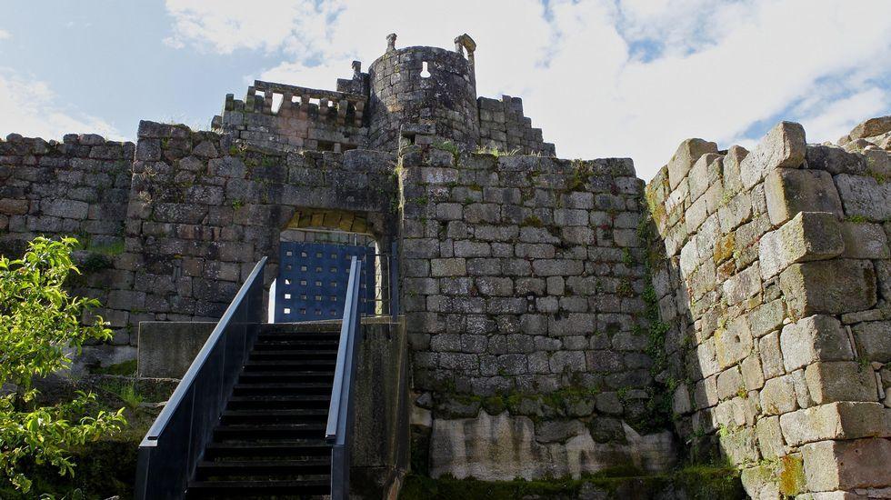 El castillo de Ribadavia, perteneciente históricamente a los condes de Sarmiento, alberga hoy en día un moderno auditorio, donde se celebra la Mostra Internacional do Teatro. Aunque no se encuentra en un excelente estado de conservación, todavía conserva una importante necrópolis de piedra del siglo IX y un sepulcro, además de gran parte de su muralla.