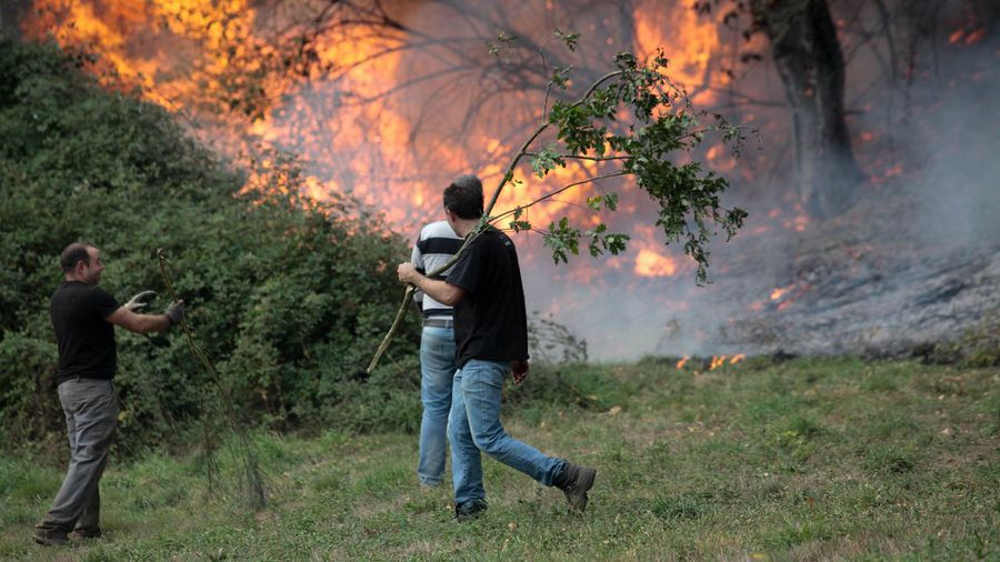 Galiza, incendios: La Xunta admite que en As Fragas do Eume han ardido 750 hectáreas.  - Página 2 L15O7030