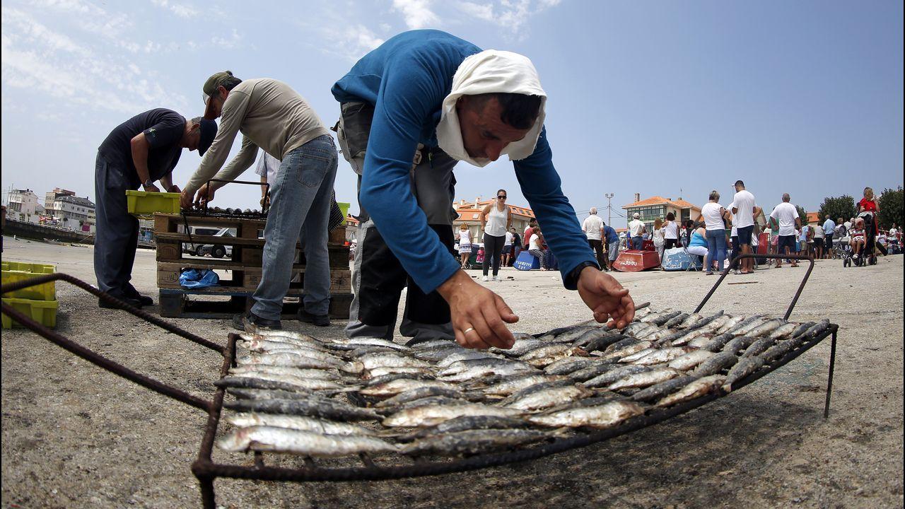 Tiburones en Galicia: «Son crías de quenlla, os adultos non se acercan á costa».Bruselas obliga a desembarcar cuerpos y aletas juntos