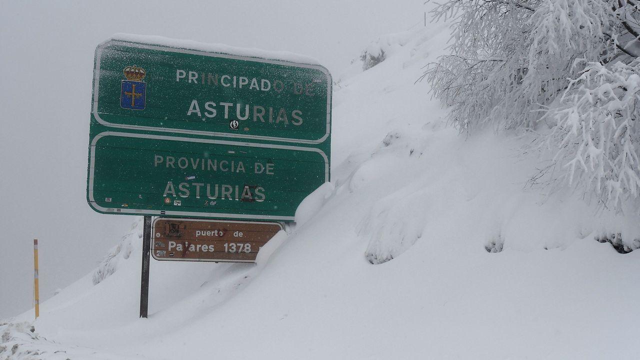Nieve caída en la zona limítrofe entre León y Asturias, en el Puerto de Pajares (León)