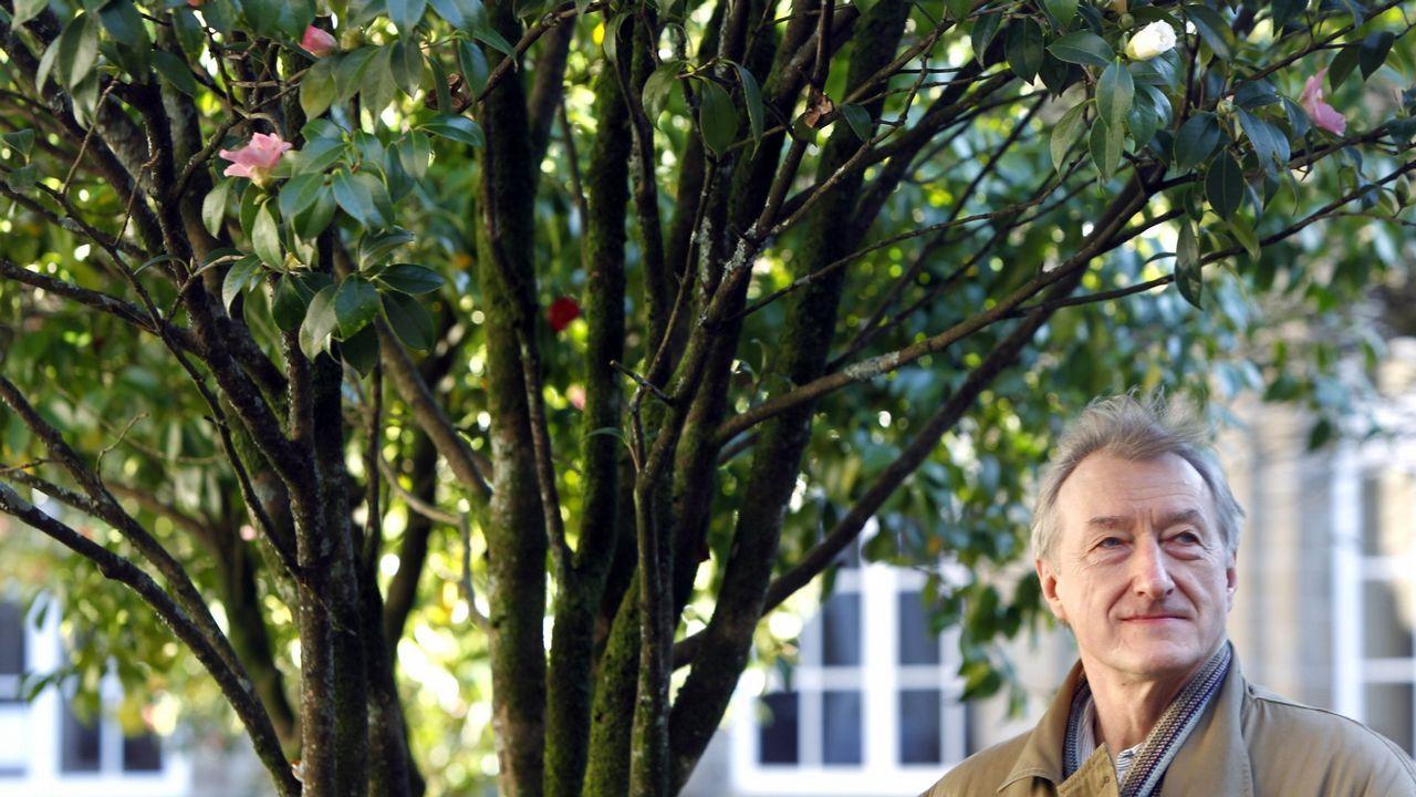 Combo ciencia brexit.Julian Barnes, retratado en Santiago en el año 2015, cuando acudió a recoger el premio San Clemente