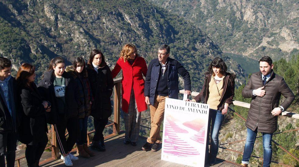 Un recorrido visual por las tierras de Amandi.Miembros del jurado examinando los trabajos presentados al concurso de carteles de la Feira do Viño de Amandi