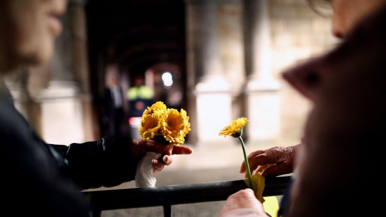 De los lazos a las vacas, ovejas, mariposas y flores... amarillas.Quim Torra y Elsa Artadi