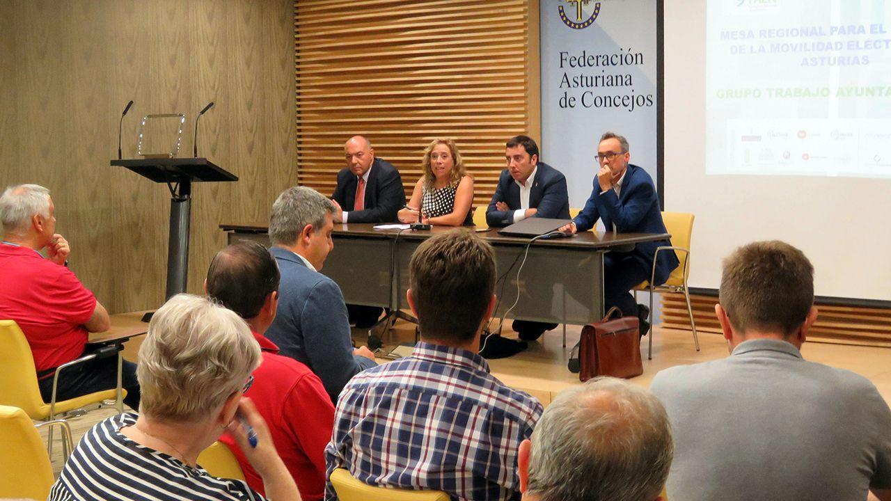 .De izquierda a derecha, el director de la Fundación Asturiana de la Energía (Faen), Juan Carlos Aguilera, la directora general de Minería y Energía, Belarmina Díaz, el vicepresidente de la Fundación Asturiana de Concejos (FACC), Gerardo Sanz, y  el responsable del área de Ahorro y Eficiencia Energética de Faen, Carlos García