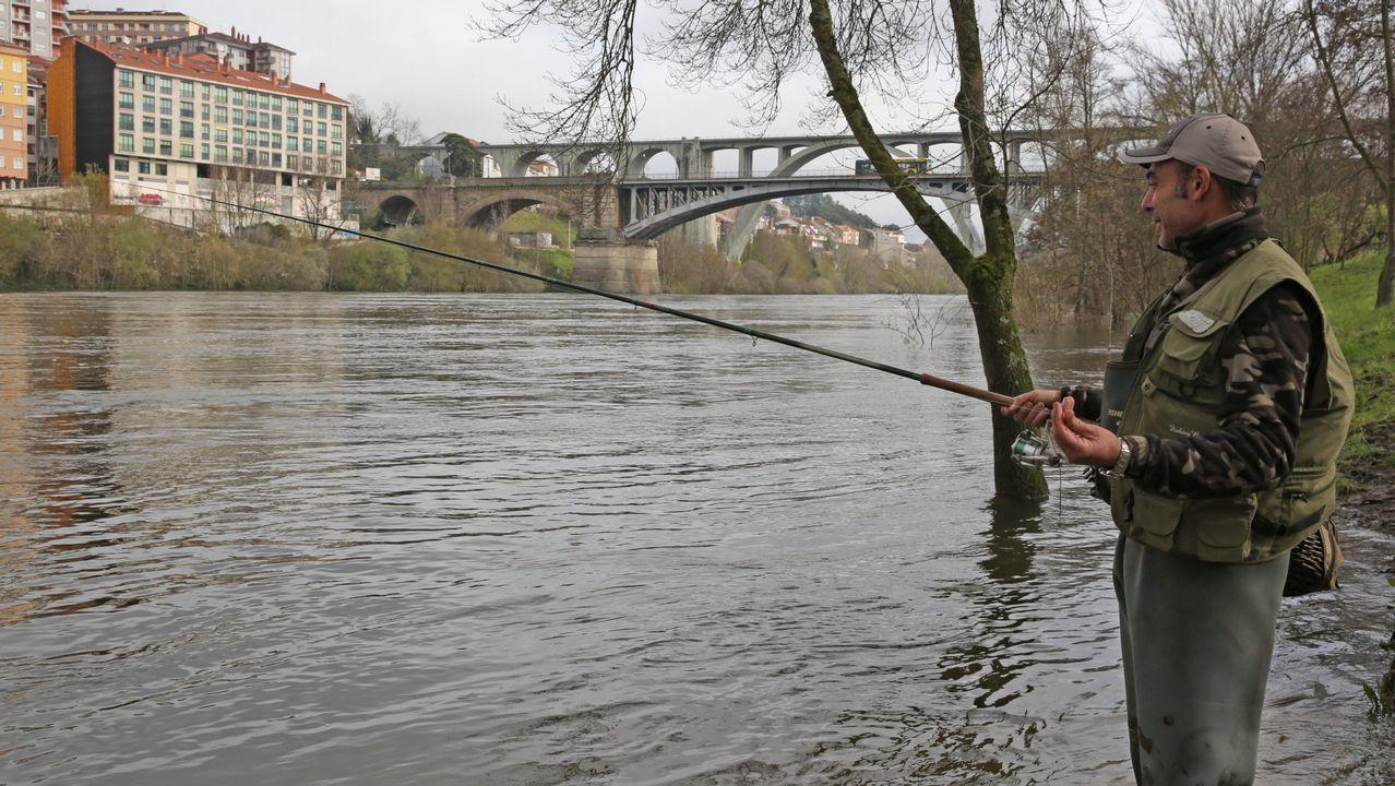 Mariscadoras de Camariñas piden poder trabajar en la zona del canal.La osa Tola en el cercado de Santo Adriano