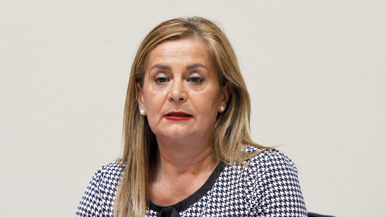 Air Europa, compañía, aerolínea.En el 2015, Carmela Silva sí compareció en la Comisión de Presupuestos del Parlamento
