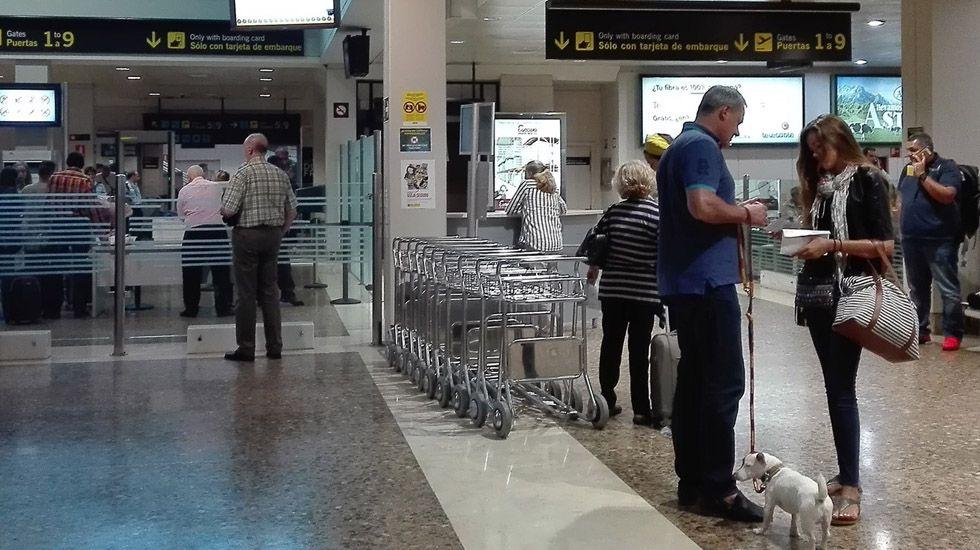 Un grupo de pasajeros consulta los vuelos en el Aeropuerto de Asturias.Aeropuerto de Asturias