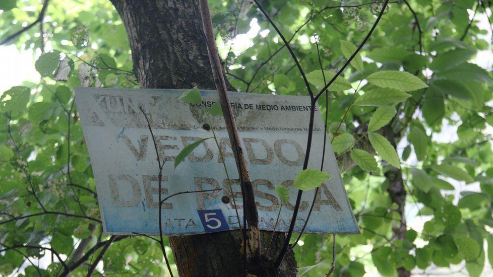 El accidente sucedió en la carretera que une Betanzos con Melide, a la altura de Présaras.