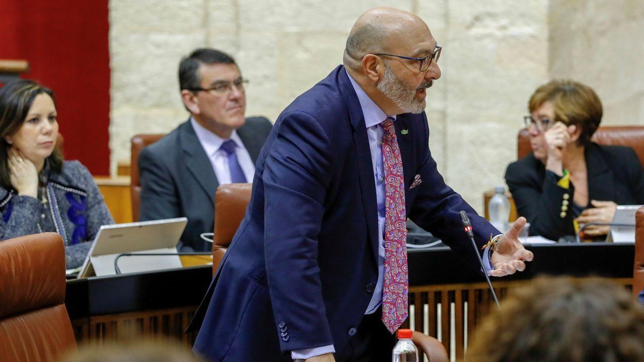 El portavoz de Vox en el parlamento andaluz, Alejandro Hernández