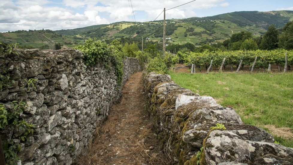 Un camino tradicional entre muros de piedra