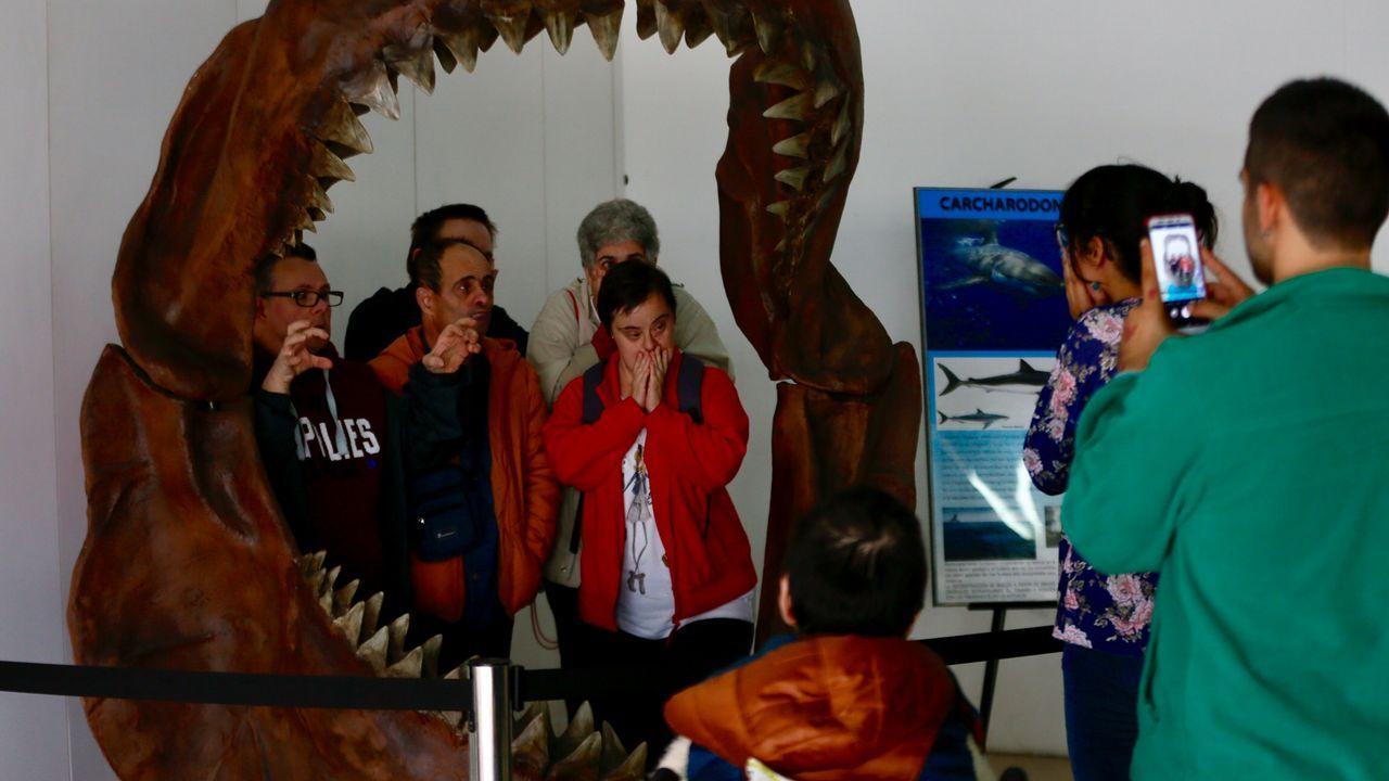 La mandíbula de un tiburón extinguido, atraccion de Minervigo.Nacho Vegas en un fotograma de «Cantares de una revolución», de Ramón Lluís Bande