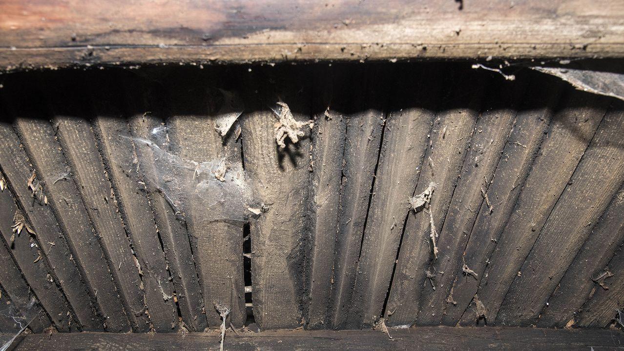 .Parte inferior de la caniceira, el piso de tablas sobre el que se depositan las castañas