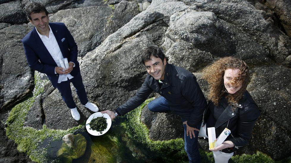 El sector del mar en contra de la mina de Touro.Una de las portavoces de la Asamblea por el Futuro de la Investigación en Asturias atiende a los medios