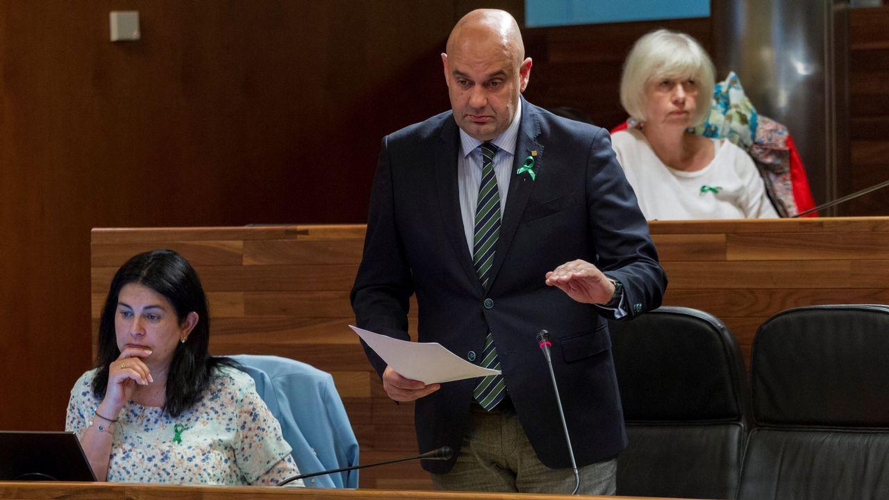 El diputado de Foro Asturias Pedro Leal (c) nuevo presidente de esta formación hasta el Congreso del 29 de septiembre y la nueva portavoz del grupo Carmen Fernández (i), durante el pleno de la Junta General.