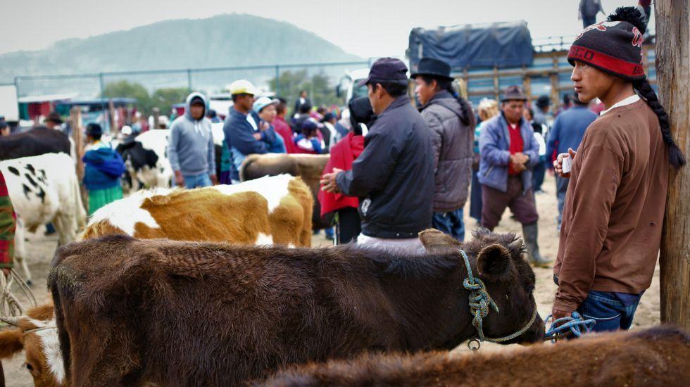 Mercados de artesanía y animales en Otavalo.Un artesano de la talla de madera en su taller de La Ronda en Quito (Ecuador)