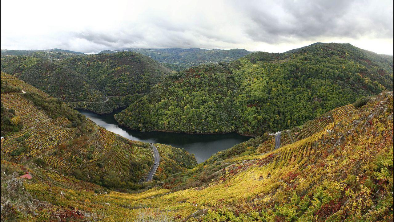 Un recorrido visual por los miradores de Pena do Castelo y O Duque.Descenso de barrancos en el cañón del río Carballido, en las cercanías de Folgoso do Courel