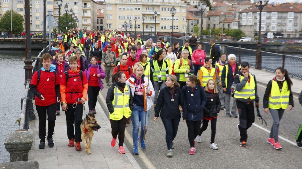 La cifra de peregrinos ha vuelta a subir, especialmente los que hacen el Camino Portugués