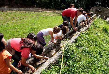 Los pequeños tienen la oportunidad de participar en huertos ecológicos en la granja de Bergando.