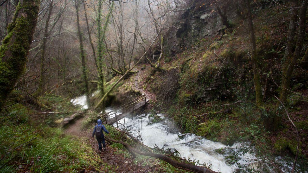Un paseo por la accesibilidad de las zonas verdes